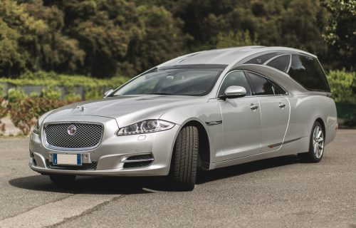 JaguarTheQueen-B