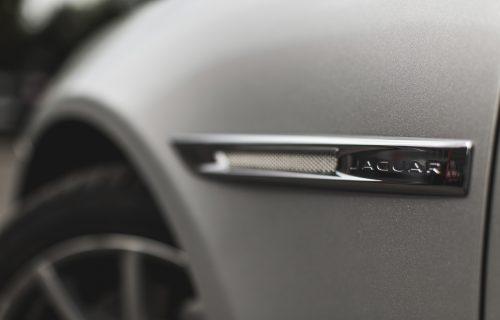 JaguarTheQueen-F