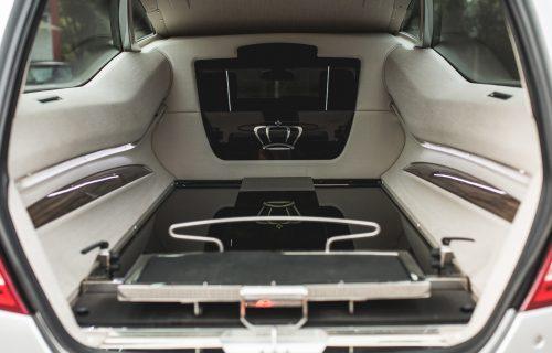 JaguarTheQueen-I