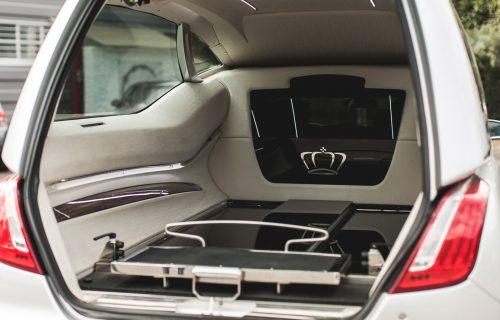 JaguarTheQueen-L